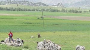 Usta Çoban: Durdu Mehmet