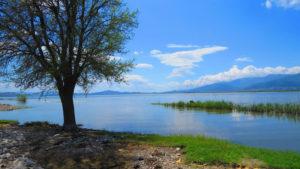 Gavur Gölü'nün ortası