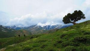 Binboğa Dağları