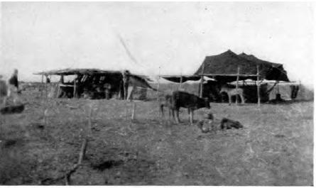 Von der Osten - 1929 - Hacıbebekli Türkmenleri