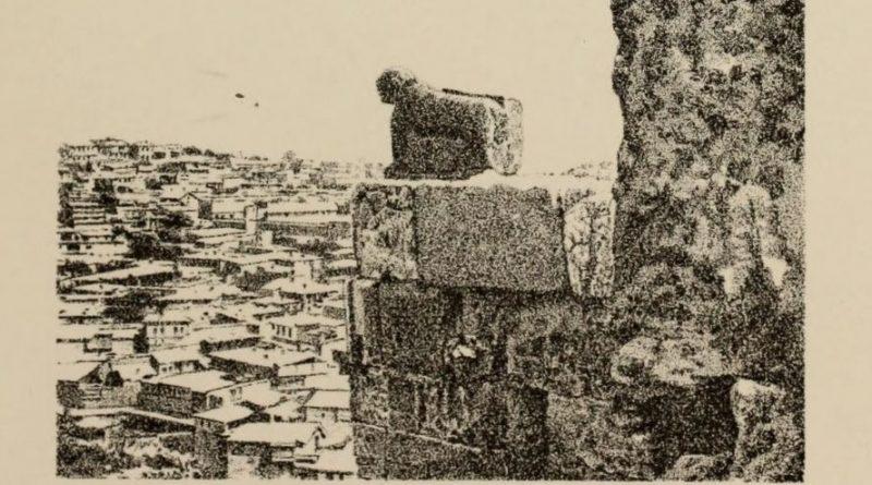 Maraş Aslanı'nı Arkeoloji Dünyasına Duyuran 1882 Tarihli Mektup