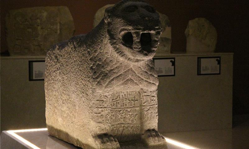 Kahramanmaraş Arkeoloji Müzesinde sergilenen Hitit dönemi aslan heykeli
