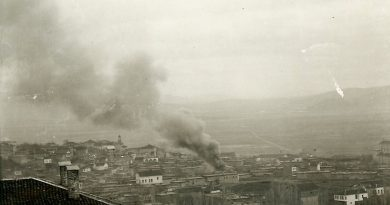 Maraş Yanıgı, 1919