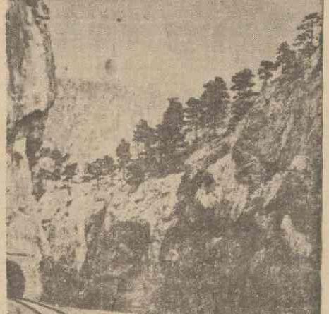 25 Ekim 1939 tarihli Son Posta gazetesinde Maraş ormanları, Ali Kayası ve Çerkez düğünlerine ilişkin haber
